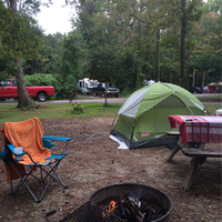 Organization Management Insight from the Campground